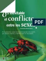Es Inevitable El Conflicto Entre Los Sexos