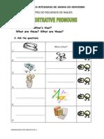Demonstrative Pronouns 1