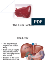 The Liver Lecture