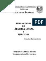 1 Preliminares FunAlgebraLineal Isbn