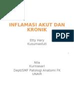 Inflamasi Akut Dan Kronik s1 Fkm Nila