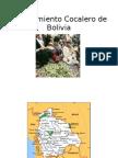 El Movimiento Cocalero de Bolivia