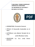 Universidad Nacional Toribio Rodríguez de Mendoza Economia