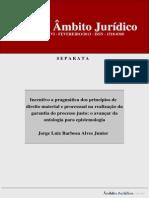 Incentivo a Pragmática dos Princípios de Direito Material e Processual na Garantia do Processo Justo