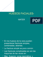 Huesos Faciales Waters