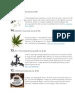 15 drogas adictivas