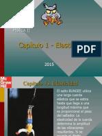 1 Elasticidad ( Tema )