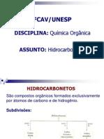 hidrocarbonetos.pdf