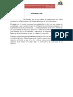 APEGO-GRUPO-4.docx