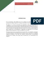 TEORÍA-DEL-APEGO-DE-BOWLBY. (1).docx