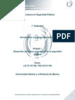 Unidad 1. Desarrollo del marco conceptual de la seguridad pública