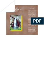 Oro, Cianuro y Otras Crónicas Ambientales_Nilton Deza UNC