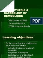 Biosynthesis of Hemoglobin
