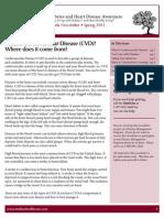 16964corp dm diabetes-cvd newsletter english-fl-web.pdf