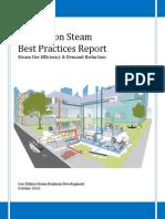 Steam-Best-Practices-Report.pdf