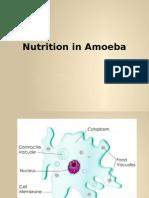 Nutrition in Amoeba