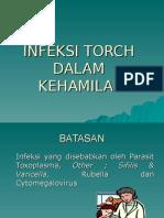 Infeksi Torch
