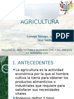 agricultura-120907115216-phpapp01.pptx