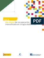 ViaClinica-RICA.pdf