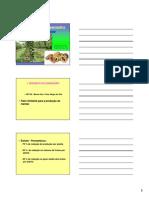 mamoeiro-130622190941-phpapp02.pdf