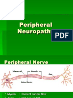 peripheralneuropathy-121107010429-phpapp01