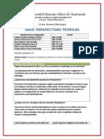perspectivas y teorias