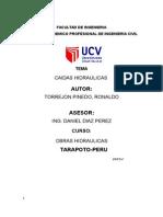 CAIDAS HIDRAULICA