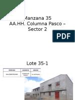 Manzana 35