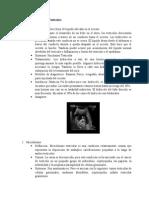 patologias sonograma testicular - andres