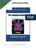 Levitation 2010