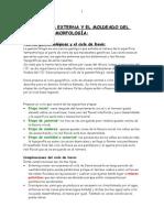 Geologia - Geomorfoloiga [Spanish].doc