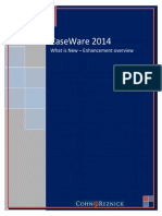 What is New With CaseWare 2014