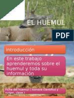 precentacion de taller de lenguaje.pptx
