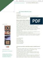 TexturaLand_ Las Texturas Definición, Tipos..