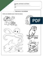 Atividades Pré- escolar.pdf