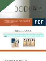 Patologias Pulpares-grupo 1