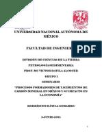 Petrología Sedimentaria seminario trabajo completo.pdf