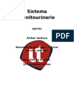 cancer cervic uterino.doc