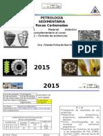 PetroSed Material Didáctico
