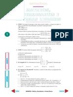Matriz Determinantes e Sistemas
