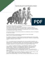 EVOLUÇÃO HUMANA.docx