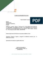Carta de Presentacion PAULO SAA
