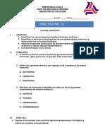 Fisiología Del Sistema Endocrino