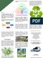 TRIPTICO Desarrollo Economico y Medio Ambiente
