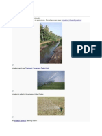 Irrigation.docx