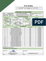 Ultrasonic Testing Reports