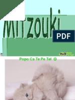 Mitzouki