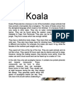 Report Text About Koala