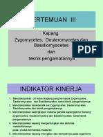 III.kapang (Zygomycetes, Deuteromycetes Dan Basidiomyacetes) Dan Teknik Pengamatannya
