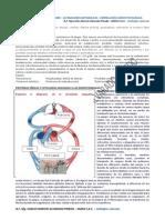 570PROTEINEMIA.pdf